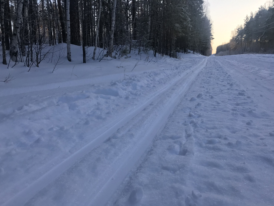 Польза беговых лыж