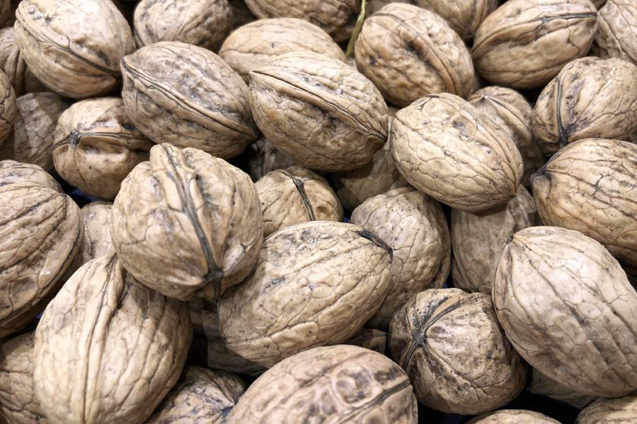 Грецкий орех: польза и лечебное действие