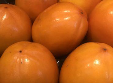 Хурма: полезные свойства сладкого плода