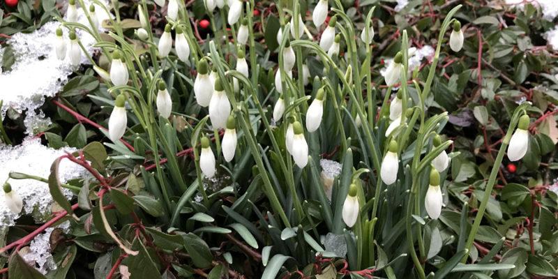 Весенняя лихорадка: полюбите себя этой весной!