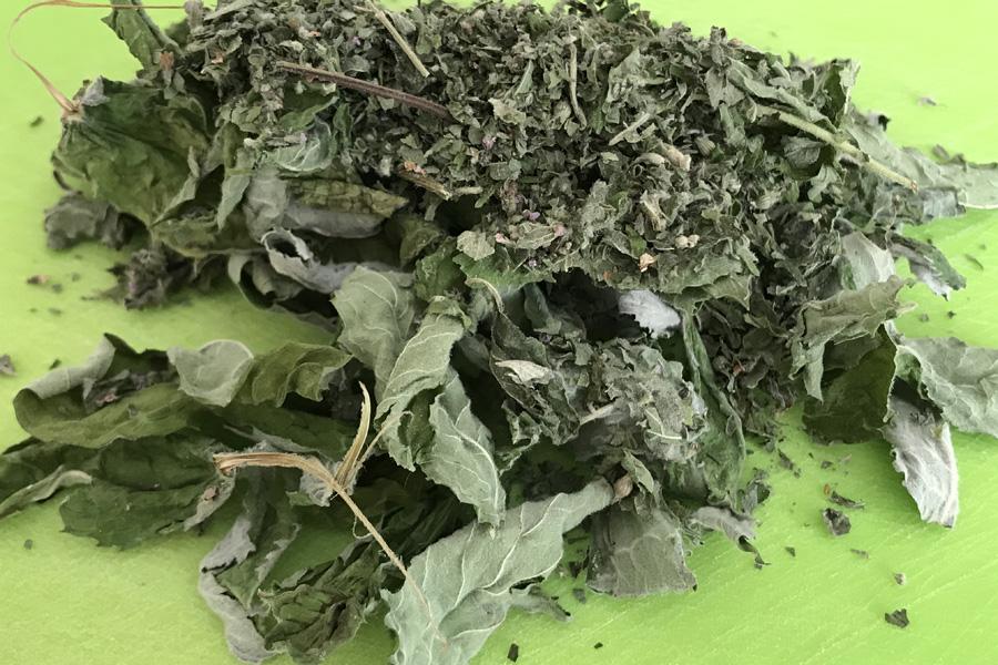 Лекарственные растения для дыхательных путей и легких