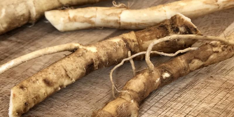 Хрен: польза острого корня, вред и противопоказания